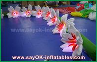 Κίνα λουλούδι Chai κρίνων διακοσμήσεων φωτισμού 8m μακρύ νάυλον διογκώσιμο για το γάμο εργοστάσιο